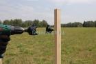 Установка ленты 40мм для лошадей_4