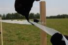 Установка ленты 40мм для лошадей_5
