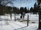 Зимнее содержание лошадей_3
